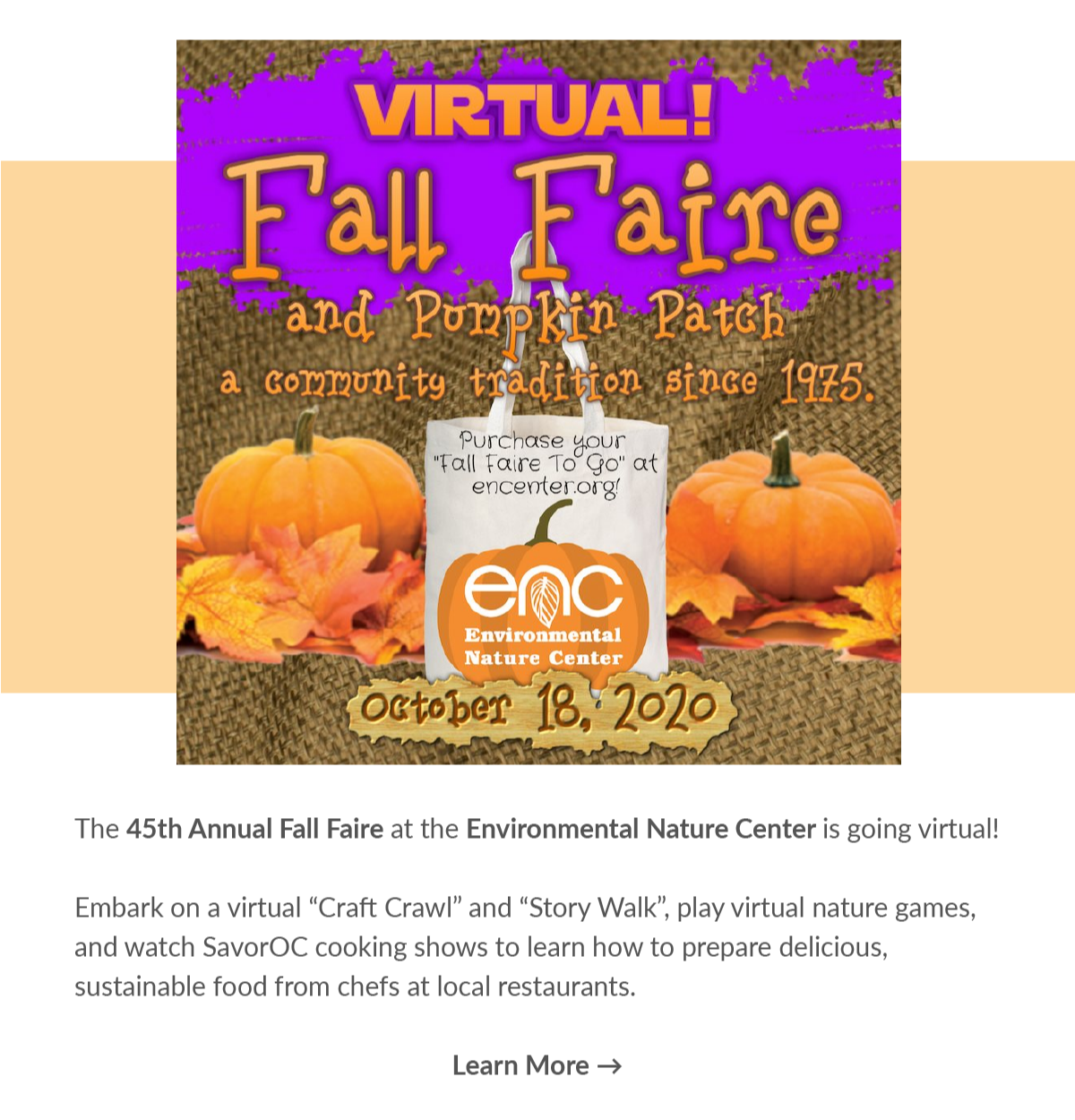Halloween poster for 45th Fall faire at Environmental nature center